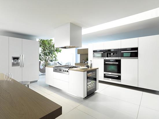 36 dar1130 hotte de ventilation encastr e professionnelle. Black Bedroom Furniture Sets. Home Design Ideas